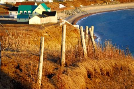 Paysage automnal, bord de mer