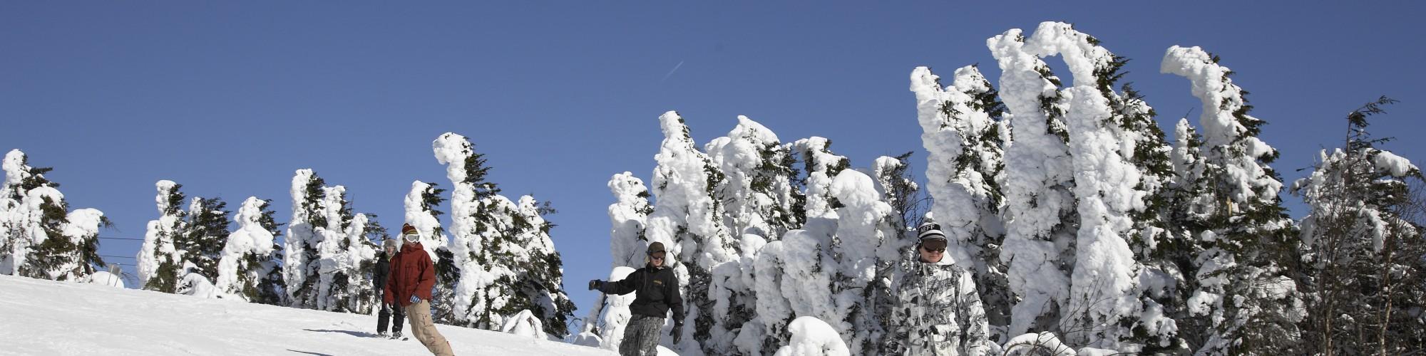 Personnes qui font de la planche à neige et du ski alpin