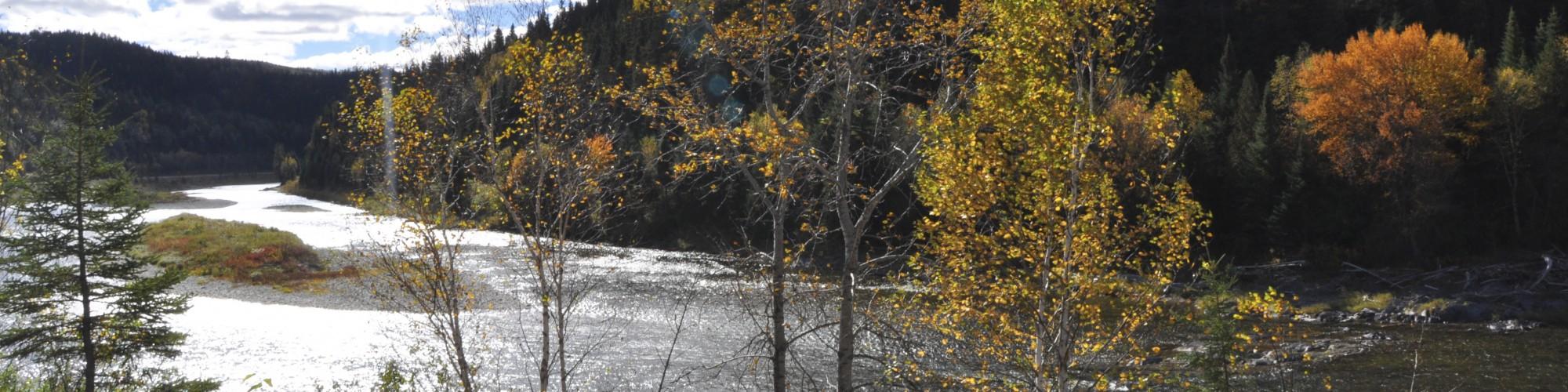 Rivière, paysage automnal
