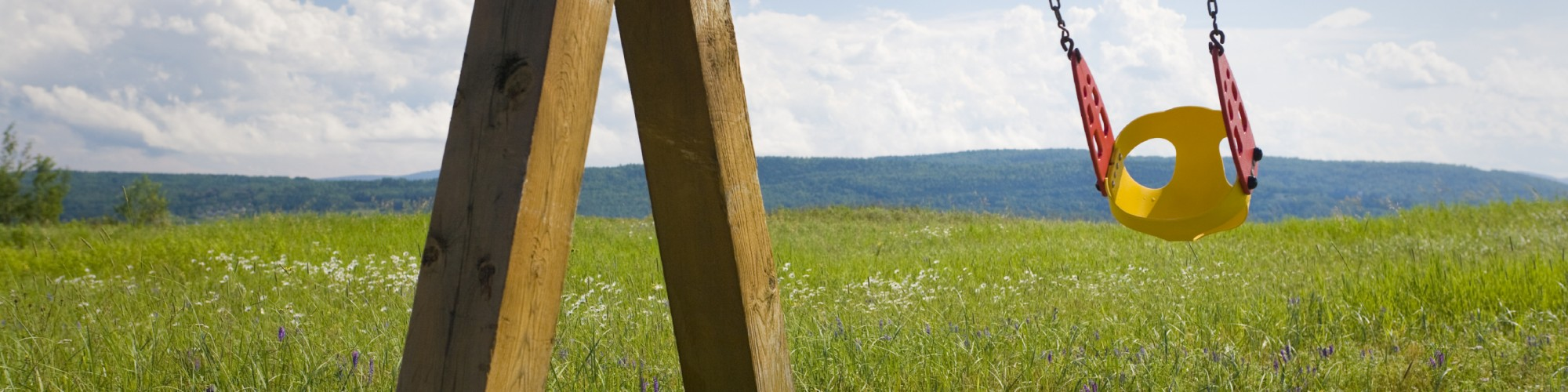 Swinging seat in a field